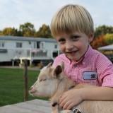 gijs luxe mammaloewagen vakantiehuisje in weiland buitengoed de gaard