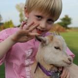 knuffel de knuffel geitjesarrangement tijdens vakantie bij buitengoed de gaard