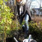 johanna ter steege plant 'de gelukkigste roos' voor de rett meisjes, nrsv, bij buitengoed de gaard