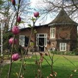 johnny de mol boompje bij het vierseizoenenhuisje, buitengoed de gaard bloeit fantastisch.