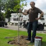 jonvan eerd plant notenboom bij buitengoed de gaard heythuysen