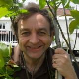 noten-droom-boom jon van eerd bij buitengoed de gaard