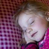 slapen op een fris kussen in de bedstee van de mammaloewagen vakantiehuisje op wielen buitengoed de gaard foto belinda keulen