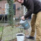 tony neef watert de sonnebloemen bij vierseizoenenhuisje buitengoed de gaard
