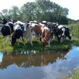 Leudal midden in Limburg