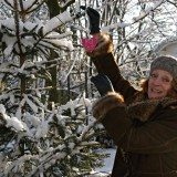 gerrie van der klei annie-rett-kerstboom buitengoed de gaard foto karin van beusekom